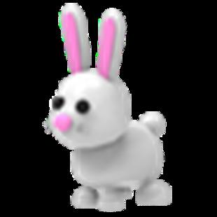 Bunny(Rare)