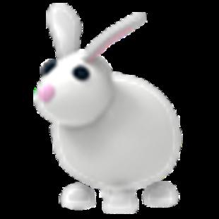 Rabbit(Rare)
